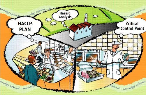 Принципи на НАССР: № 1-провеждане на анализ на опасностите